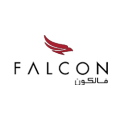Falcon Aviation Services (FAS)